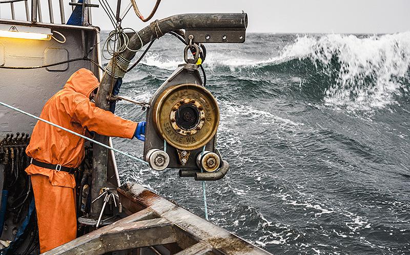 Southeast alaska red king crab csm photos 39 blog for Fishing jobs in alaska