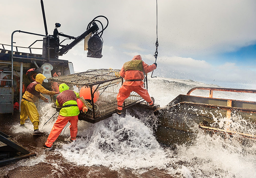 Bering sea opies and the reality of the deadliest catch for Bering sea fishing