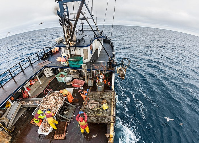 Aerial view of the deck and crew of the F/V Arctic Hunter.